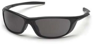 12 Pack Azera - Black Frame Gray Lens